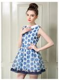 Blue Turn-down Collar Printed Dress