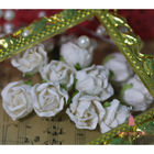Big Rose Buds - White