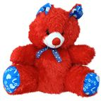 Cute Red Teddy