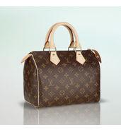 Louis Vuitton Small Leather Handbag
