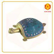 Tortoise Blue