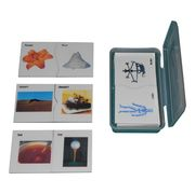 Homophone Cards