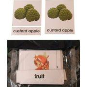 3 Part Nomenclature Cards: Fruits