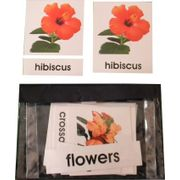 3 Part Nomenclature Cards: Flowers
