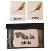 3 Part Nomenclature Cards: Birds