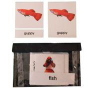 3 Part Nomenclature Cards: Fish
