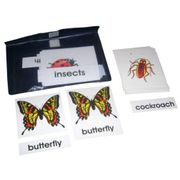 3 Part Nomenclature Cards: Insects