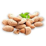 Best quality Almond (Badam) With Shell 1kg
