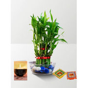 2 Layer Lucky Bamboo with Candle Combo