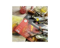 Canson Figueras 290 GSM 65 x 100 cm Pack of 12 Canvas Grain Sheets