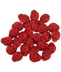 Tiny Ladybugs