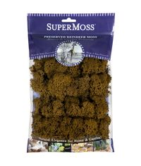 Brown - Preserved Reindeer Moss 2oz