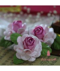 Big Roses - Pink Combo