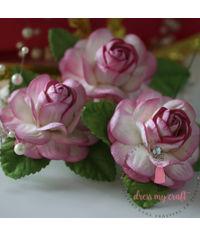 Big Roses - Shaded Pink