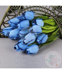 Denim Blue - Tulips