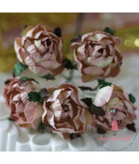 Cabbage Rose - Shabby Pink