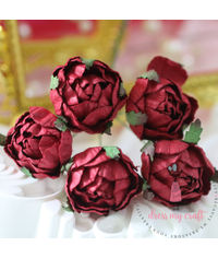 Cabbage Rose - Maroon