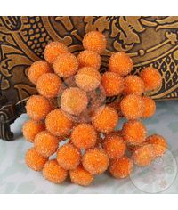 Crystal Beaded Single Pollens - Orange
