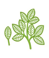 Faux Quilled Leaves - Die