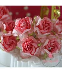 Curly Roses - Pretty Peach