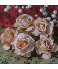 Curly Roses - Light Orange