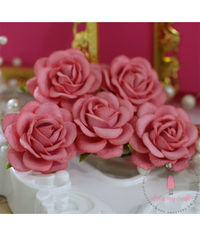 Curved Roses 45 MM - Pretty Peach
