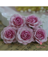 Curved Roses 45 MM - Pink Beauty