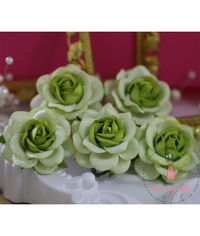 Curved Roses 45 MM - Green Beauty