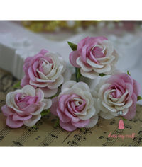 Curved Roses 45 MM - Pink Combo