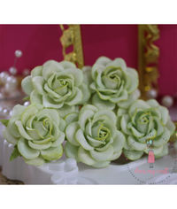 Curved Roses 45 MM - Soothing Green
