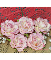 Curved Roses 45MM - Pretty Pink