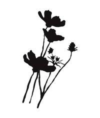 Wild Poppy Silhouette