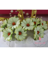 Daisy Flower - Pastel Green