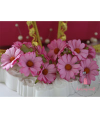 Daisy Flower - Bright Pink