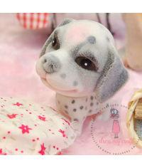 Miniature Dog - Charlie