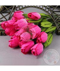 Dark Shaded Pink - Tulips