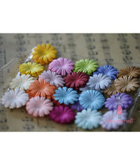 Daisy Flat Flowers - Multicolor