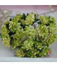 Gysophila Flower - Shaded Green