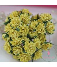Gysophila Flower - Yellow