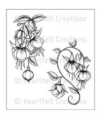 Fuchsia Clusters - Stamp