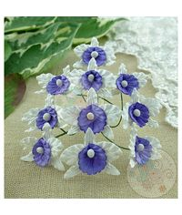 White and Lilac/Blue - Orchids Combo