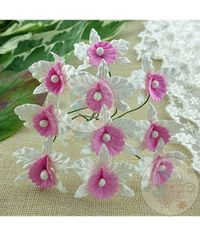 White and Baby Pink - Orchids Combo