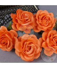 Mulberry Curved Roses - Orange