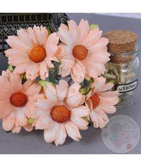 Light Orange - Mulberry Daisy Flower