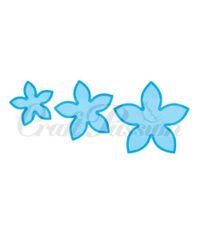 Blossom set 3 Flowers - Die