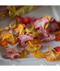 Maple Leaf - Autumn Collection