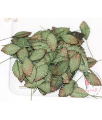 Small Rose Leaves - Vintage Shaded