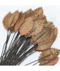 Small Rose Leaves - Brown