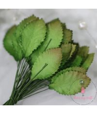 Rose Leaves - Shaded Green