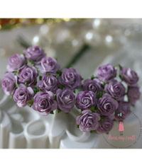 Micro Mini Roses - Lavender